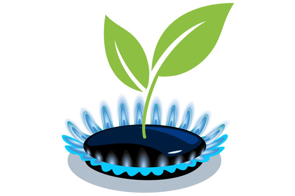 Fast Natural Gas & Biogas analysis
